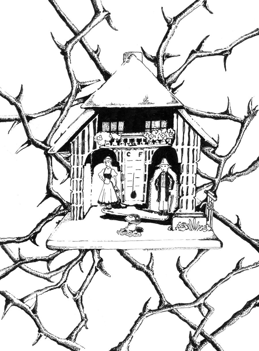 Illustration of Weather House Story