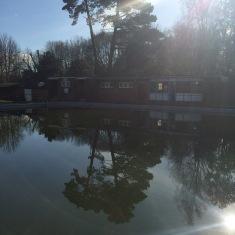 Trees Reflected in Dark Pells Pool
