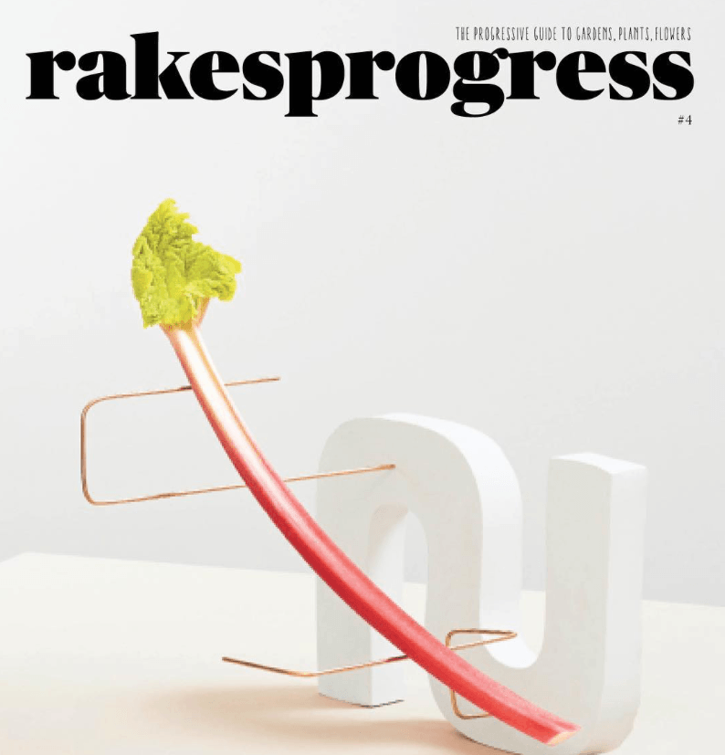Rakes Progress Issue 4