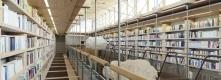 Library © Jan Michalski Foundation